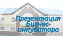 b_220_0_16777215_00_images_Presentation_incub.png